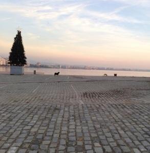 Peripatetics in Thessaloniki