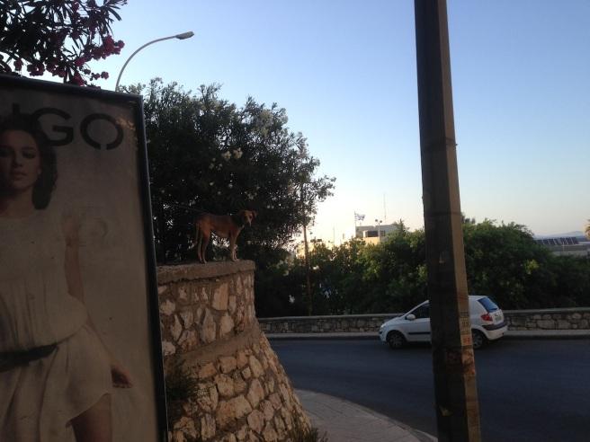 Crete 2013