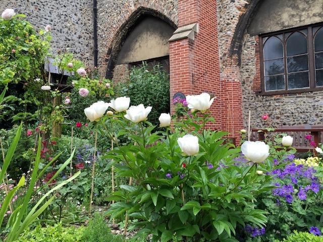 Garden St H. Norwich.jpg